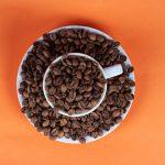 Arabica és robusta – a két vetélytárs?!
